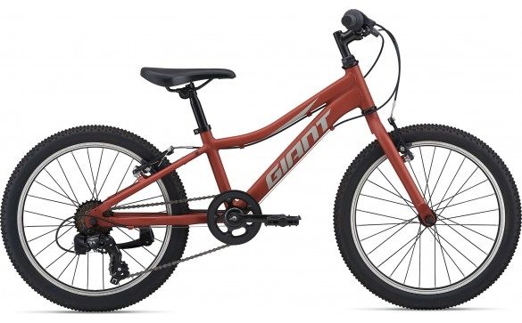 Велосипед GIANT XtC Jr 20 Lite (2021)