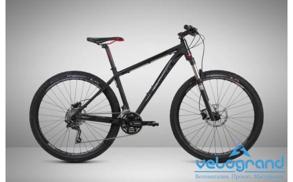 Горный велосипед Format 1213 27 (2015)