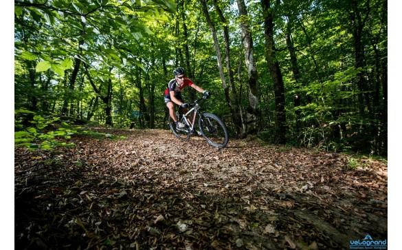 Горный велосипед Format 1212 Elite 29 (2016)