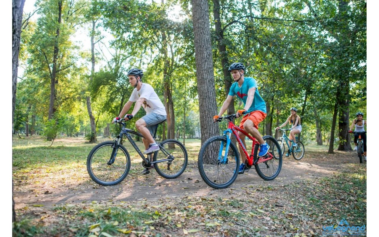 Горный велосипед Format 1412 26 (2016)