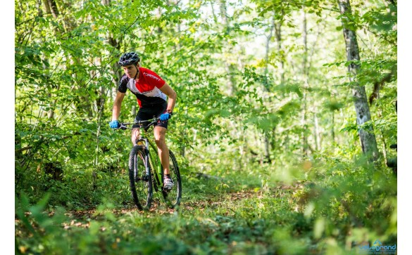 Горный велосипед Format 1212 27 (2016)