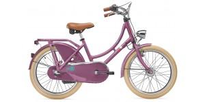 Детский велосипед Scool chiX classic 20-3 Nexus (2017)